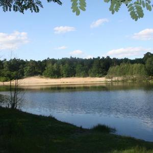 Sachsendorfer See